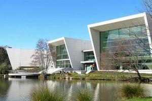Tiết lộ bí quyết lọt top 1,1% ĐH tốt nhất thế giới của ngôi trường New Zealand