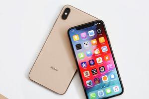 LG sẵn sàng cung cấp tấm nền OLED cho iPhone