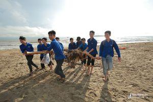 Thanh niên ra quân hưởng ứng chiến dịch làm cho thế giới sạch hơn
