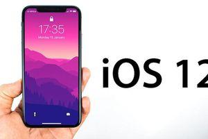 Cách tải iOS 12 về iPhone của bạn ngay bây giờ