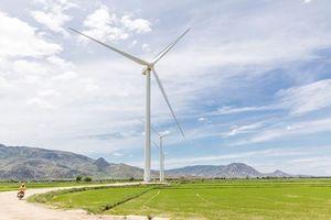 Thủ tướng phê duyệt việc tăng giá điện gió: Tín hiệu đặc biệt quan trọng thúc đẩy đầu tư