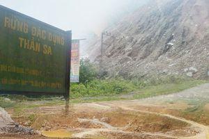 Thái Nguyên: Hàng loạt sai phạm trong vụ phá rừng đặc dụng ở Thần Sa