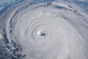 Bắc Carolina (Mỹ) hoang tàn do siêu bão Florence
