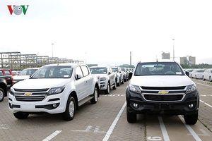 Ô tô nhập khẩu về Việt Nam dần tăng trưởng sau thời gian 'gặp hạn'