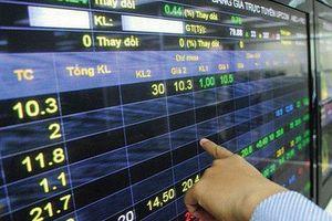 Mua bán 'chui' cổ phiếu ở DSG, công ty ở TP.HCM bị phạt nặng