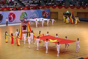 Đà Nẵng khai mạc Đại hội Thể dục Thể thao lần thứ VIII năm 2018