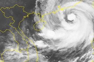 Jetstar dừng 4 chuyến bay đến Quảng Châu vì bão Mangkhut