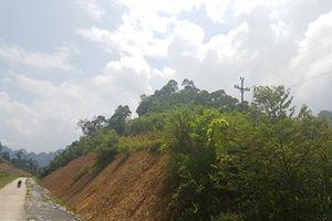 Đoàn liên ngành kết luận vụ phá rừng đặc dụng làm đường vào mỏ khai thác vàng