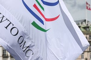Cải tổ WTO: Ngưỡng cửa lớn đã mở