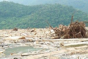 Bão rác tấn công hồ đập, bờ biển: Nơi đùn đẩy trách nhiệm, nơi thanh niên thu dọn