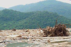 Hồ thủy điện thành bãi rác khổng lồ, đơn vị liên quan 'đá bóng trách nhiệm'