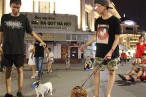 Loài chó và sự thay đổi quan niệm từ miếng ăn sang 'người bạn' trung thành