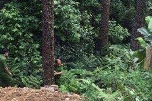 Chuyến đi Tam Đảo định mệnh của đôi nam nữ ngày cuối tuần
