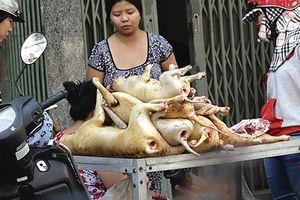 Người Hà Nội hiến kế để 'nói không' với thịt chó