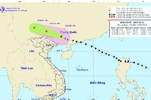 Bão số 6 gây gió mạnh cấp 6, giật cấp 7 ở đảo Cô Tô và Bạch Long Vĩ