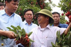 Doanh nghiệp, doanh nhân là hạt nhân trong tái cơ cấu nông nghiệp