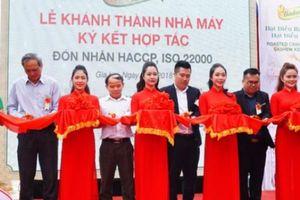 Ra mắt nhà máy chế biến hạt điều chuẩn HACCP ở Gia Lai