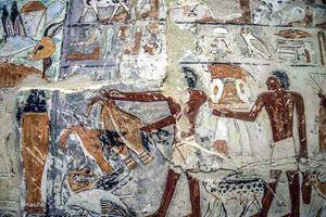Lăng mộ Ai Cập 4.000 tuổi mở cửa chào đón công chúng