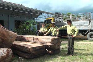 Liên tục phát hiện xe tải chở gỗ lậu