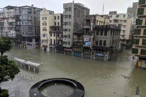 Sức tàn phá kinh hoàng của siêu bão Mangkhut