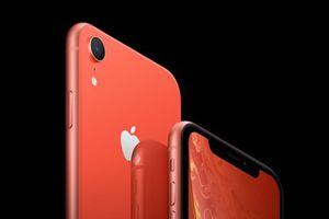 Sự kiện quốc tế 10-16/9: Ra mắt ba mẫu iPhone mới