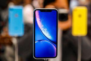 Chuyên gia tài chính phố Wall nói gì khi giá cổ phiếu của Apple giảm 1,2% sau lễ ra mắt iPhone 2018