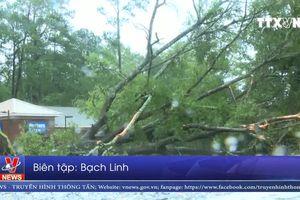 Bão Florence gây lũ lụt nghiêm trọng tại Mỹ