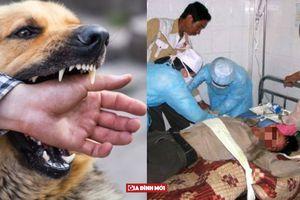 Địa phương bán thịt chó nổi tiếng mỗi ngày có 60 - 70 người tiêm phòng bệnh dại