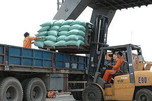 Ngành Logistics: 'Khát' nhân lực