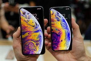 Doanh số đặt trước iPhone Xs mờ nhạt, người dùng quyết tâm chờ iPhone Xr