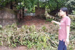 Bắc Giang: Người dân khốn khổ vì chính quyền vô tâm