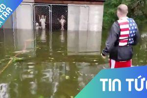 Người đàn ông cứu sống đàn chó bị nhốt sau trận bão Florence