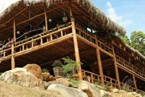 Độc đáo: Dựng nhà gỗ lớn giữa rừng, không dùng 1 cái đinh sắt