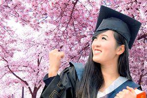 Những thứ bạn có được khi đi du học Nhật Bản