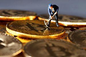 Các trang web chính phủ Ấn Độ bị tấn công đào tiền mã hóa