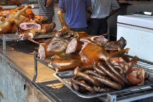 Hà Nội tuyên truyền không ăn thịt chó: Bỏ ăn thì mới hết trộm chó?