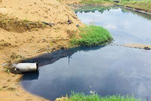 Vựa tôm đầu độc môi trường suốt 6 năm: Phạt 2 triệu đồng (!?)