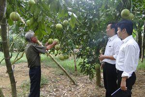 Agribank vì một nền nông nghiệp xanh