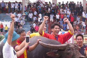 Lễ hội chọi trâu Đồ Sơn: Trâu số 12 vô địch sau trận 'huyết chiến'