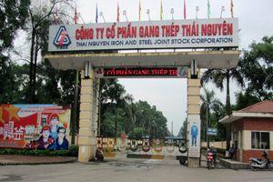 Hòa Phát 'đánh tiếng' mua Dự án gang thép Thái Nguyên giai đoạn II