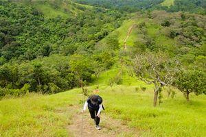 Tà Năng - Phan Dũng: Cung đường trekking tuyệt đẹp không dành cho người yếu đuối