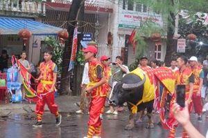 Hàng vạn du khách 'đổ' về Lễ hội chọi trâu Đồ Sơn 2018