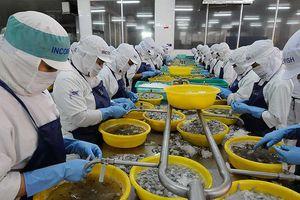 Tôm, cá Việt rộng đường sang Mỹ