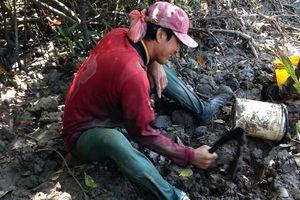 Hình ảnh nhọc nhằn mưu sinh xứ rừng ngập mặn Mũi Cà Mau