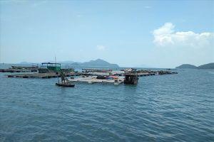Doanh nghiệp Trung Quốc xin cấp 'mỏ cát' trên vùng nuôi thủy sản