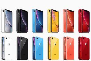 iPhone XR đáng mua hơn iPhone XS?