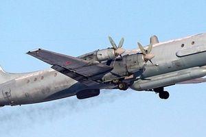 Hành động của Nga sau khi máy bay bị Syria 'bắn nhầm'