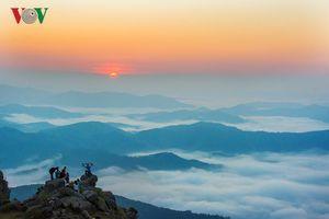 Tắm nắng thu vàng rực trên cao nguyên Đồng Cao