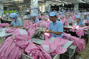Thận trọng tìm cơ hội xuất khẩu vào thị trường Mỹ