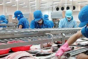 'Nữ hoàng cá' phá vỡ kỷ lục xuất khẩu trong tháng 7